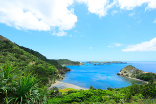 小笠原諸島父島・中山峠より南島方向を望むの写真素材 [FYI03224776]