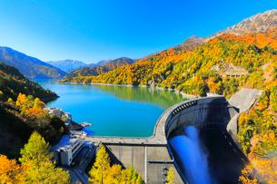秋の立山・快晴の黒部ダムに遊覧船と観光放水に虹の写真素材 [FYI03224883]