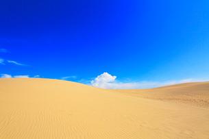 鳥取砂丘と日本海の写真素材 [FYI03224890]