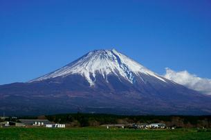 富士山と青空と高原の牧場の写真素材 [FYI03225414]