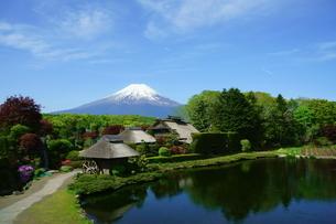 富士山と忍野の茅葺き屋根の写真素材 [FYI03225469]