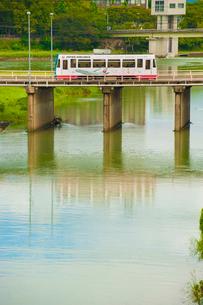 旭川を渡る路面電車(岡山電気軌道)2の写真素材 [FYI03225488]