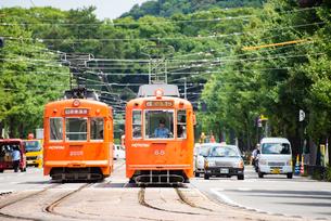 松山市内を走る路面電車 伊予鉄道の写真素材 [FYI03225549]