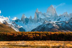 紅葉のチャルテン付近から望む、パタゴニアのフィッツロイ峰の写真素材 [FYI03225550]