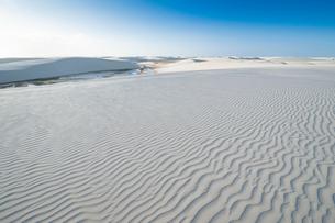 レンソイスの白砂の砂漠に浮かぶ風紋の写真素材 [FYI03225578]