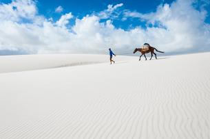 レンソイス砂漠の白砂の砂丘を歩く人とロバの写真素材 [FYI03225591]
