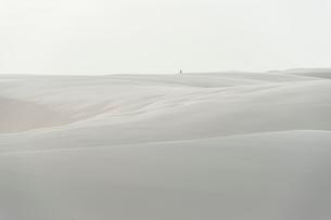 レンソイス砂漠の白砂のシーツのような砂丘と佇む人の写真素材 [FYI03225615]