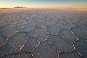ウユニ塩湖で迎える夕日と亀甲模様の写真素材 [FYI03225618]