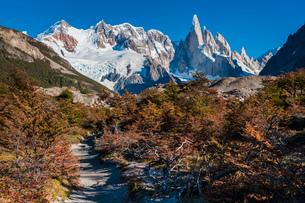 パタゴニアの針峰セロトーレと紅葉の写真素材 [FYI03225645]