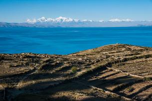 チチカカ湖の「太陽の島」から望むアンデス山脈と段々畑アンデネスの写真素材 [FYI03225648]