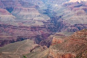 グランドキャニオンのプラトーポイントと渓谷の写真素材 [FYI03225837]