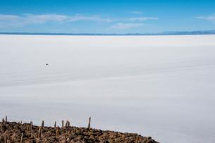 ウユニ塩湖のサボテン島と車の写真素材 [FYI03225952]