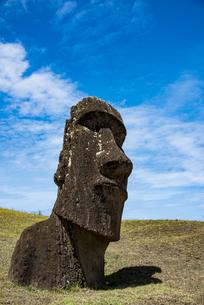 モアイの石切り場 ラノララクの写真素材 [FYI03225964]