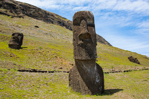 モアイの石切り場 ラノララクの写真素材 [FYI03225971]