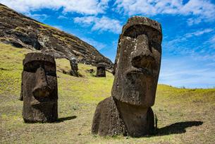 モアイの石切り場 ラノララクの写真素材 [FYI03225972]