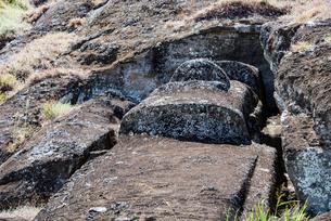 モアイの石切り場 ラノララクの写真素材 [FYI03225975]
