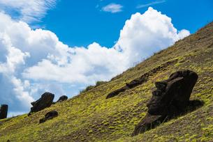 石切り場・ラノララクのモアイの写真素材 [FYI03225978]