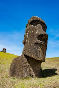 石切り場・ラノララクのモアイの写真素材 [FYI03225981]