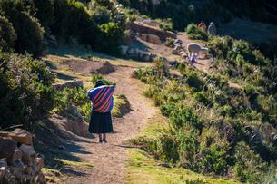 農道を歩くアンデスの先住民の写真素材 [FYI03226165]