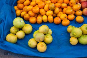 アンデスの市場のオレンジの写真素材 [FYI03226198]