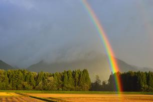 目前の虹立つの写真素材 [FYI03226527]