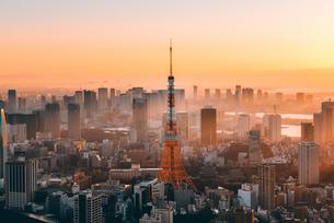 朝日を浴びる東京タワーの写真素材 [FYI03226558]