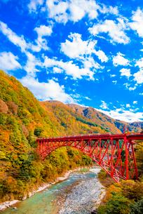 黒部峡谷の紅葉とトロッコ電車の写真素材 [FYI03226651]