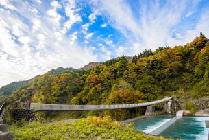 常願寺川に架かる心のかけ橋の写真素材 [FYI03226652]