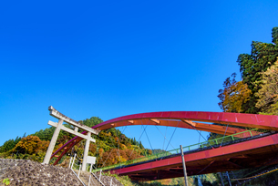 愛本姫社の鳥居と愛本橋の写真素材 [FYI03226654]