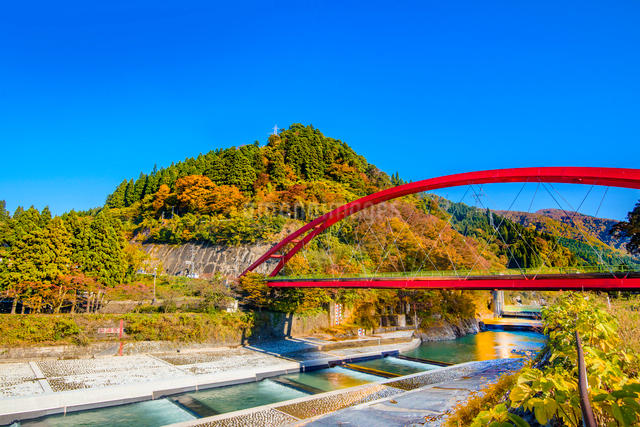 愛本橋と鮮やかな紅葉の写真素材 [FYI03226663]