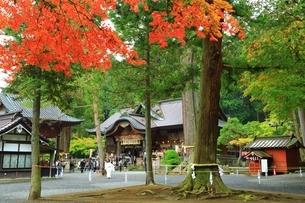 秋の北口本宮冨士浅間神社の写真素材 [FYI03226808]