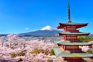 富士山と五重塔に桜の写真素材 [FYI03226809]