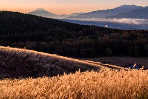 朝日が差し込む踊場湿原付近から富士山を望むの写真素材 [FYI03226916]