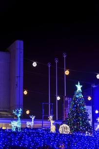 茨城県立県民文化センターのクリスマスイルミネーションの写真素材 [FYI03226931]