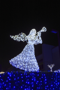 茨城県立県民文化センターのクリスマスイルミネーションの写真素材 [FYI03226933]