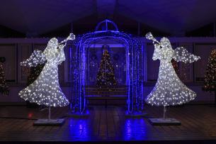 茨城県立県民文化センターのクリスマスイルミネーションの写真素材 [FYI03226934]