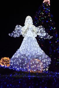 茨城県立県民文化センターのクリスマスイルミネーションの写真素材 [FYI03226937]