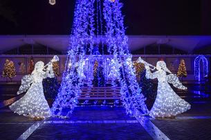茨城県立県民文化センターのクリスマスイルミネーションの写真素材 [FYI03226939]