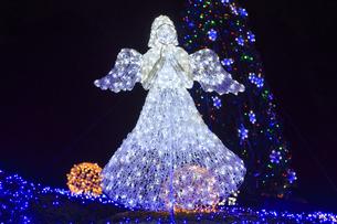茨城県立県民文化センターのクリスマスイルミネーションの写真素材 [FYI03226942]