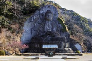 日本寺の大仏の写真素材 [FYI03227027]