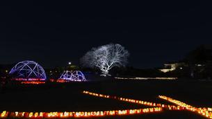 夜梅祭の写真素材 [FYI03227060]