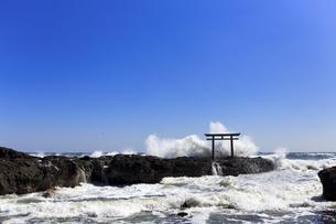 大洗磯前神社神磯の鳥居の写真素材 [FYI03227075]