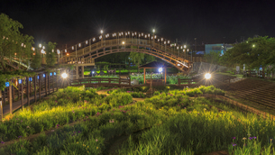 夜の水郷潮来あやめ園の写真素材 [FYI03227223]