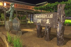 夜の水郷潮来あやめ園の写真素材 [FYI03227230]
