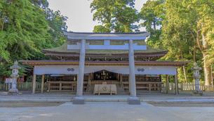 鹿島神宮 拝殿の写真素材 [FYI03227241]