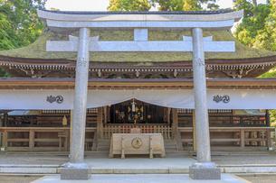 鹿島神宮 拝殿の写真素材 [FYI03227242]