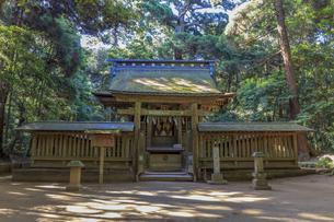 鹿島神宮 楼門の写真素材 [FYI03227251]