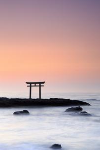 大洗磯前神社神磯の鳥居の写真素材 [FYI03227255]