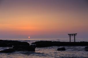大洗磯前神社神磯の鳥居の写真素材 [FYI03227261]