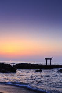 大洗磯前神社神磯の鳥居の写真素材 [FYI03227266]